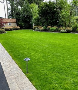 lawn care in Bothell